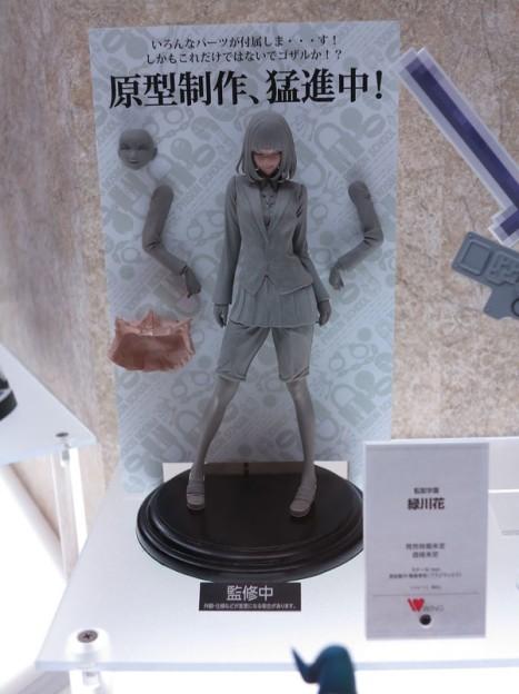 Kangoku Gakuen - Midorikawa Hana (Wing)